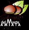 Associazione per la Valorizzazione della Castagna del Monte Amiata IGP